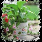 Blumentopf mit individuellen Druck
